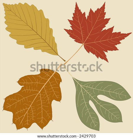 Four Leaves, vector file, change the colors as you like....