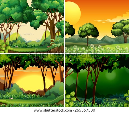 four scenes of forest at day