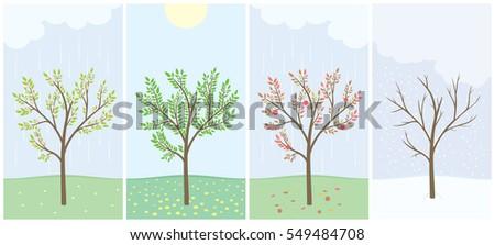 four season with tree spring