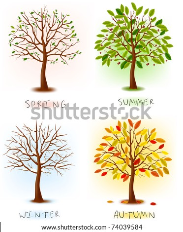 four seasons   spring  summer