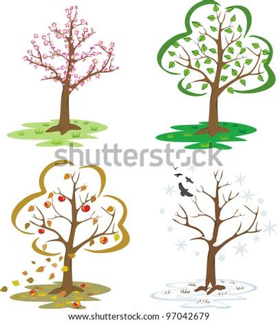 four seasons - trees during the seasons