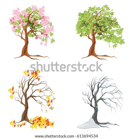 four seasons trees on white