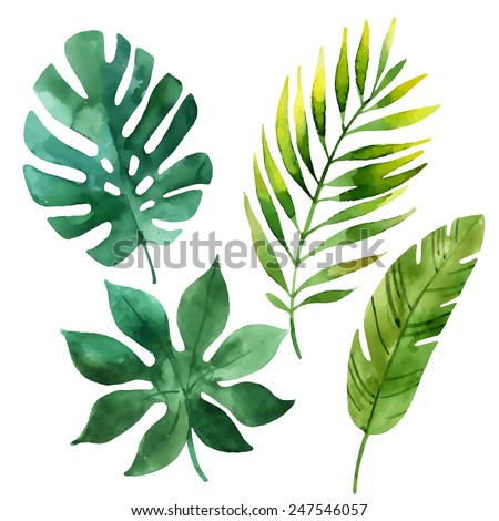 four tropical leaves hand