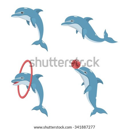 four vector dolphin on a white