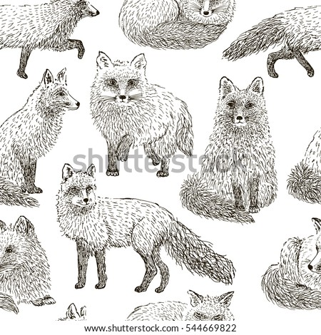 fox seamless pattern sketch