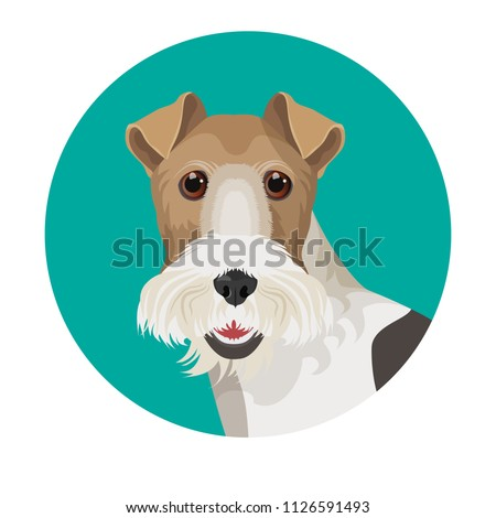 fox terrier in color circle