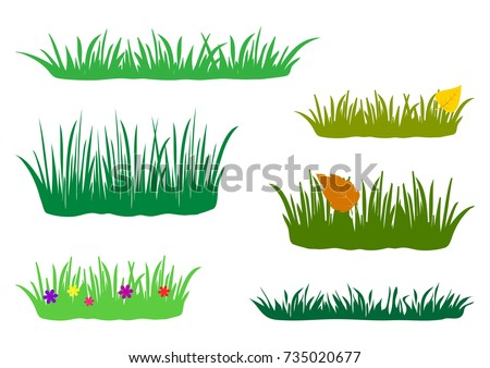 Fragments of spring, summer and autumn grass. Set of design elements of nature. Colored flat set, isolated on white background. Vector illustration.