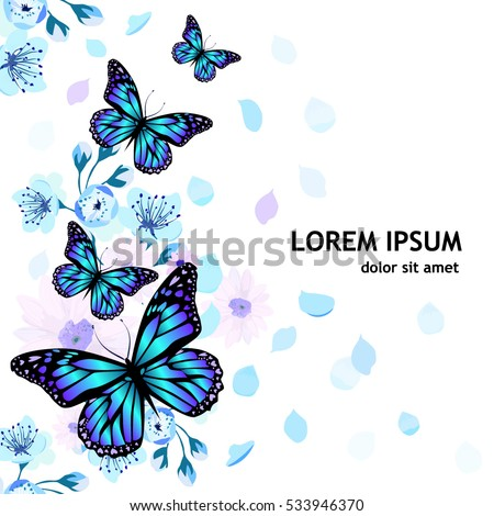 frame from flowers and butterflies background. Vector