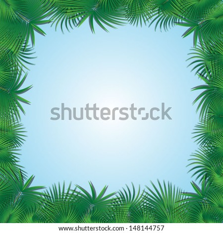frame from palm tree branches