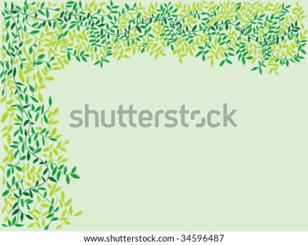 Frame of branches with leaves in various shades of green with a shadow