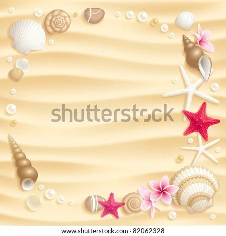frame of seashells and