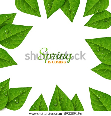 frame with green leaves and