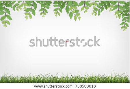 Framing of green leaves and green grass with white area for background. Natural abstract background. Vector illustration.