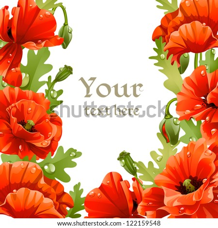 Framing of red poppies for your text