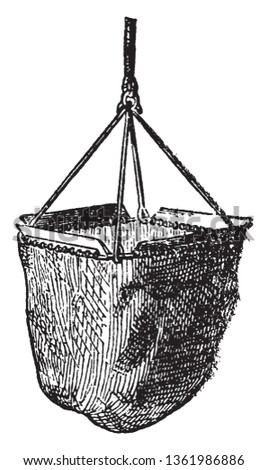 Fredrick Muller Dredge gives a quaint description not very unlike that used by Hall and Forbes, vintage line drawing or engraving illustration.