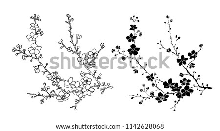 Free hand Sakura flower vector set, Beautiful line art Peach blossom isolate on white background