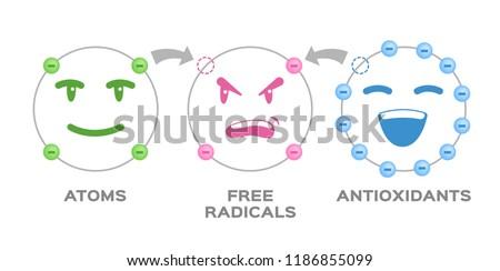 free radical and Antioxidant vector . Antioxidant donates electron to Free radical . infographic cartoon Сток-фото ©