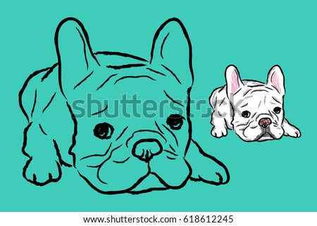french bulldog lie down on the