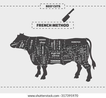 french cuts of beef vector