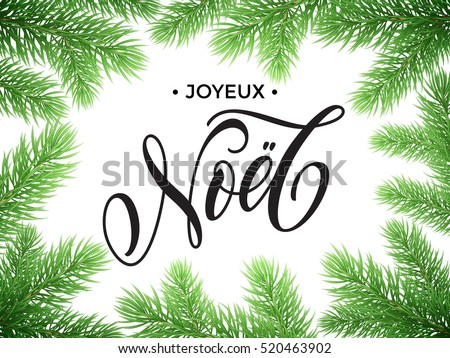 French Merry Christmas Joyeux Noel, New Year Bonne Annee text lettering in frame of pine, fir, spruce tree branches. Festive Joyeux Noel greeting card with Christmas golden stars ornaments