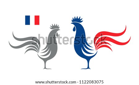 French rooster. Isolated rooster on white background.