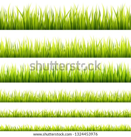 Fresh and green spring grass sprouts and herbal growth seamless banners. Springtime lawn panorama in a sunlight. Foliage lines for website footers and decorations.