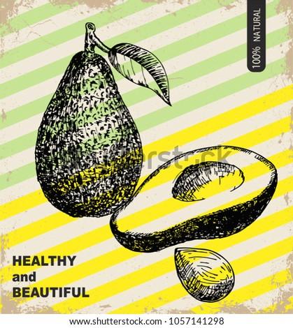 Fresh avocado design template. Botanical fruit. Engraved avocado. Vector illustration
