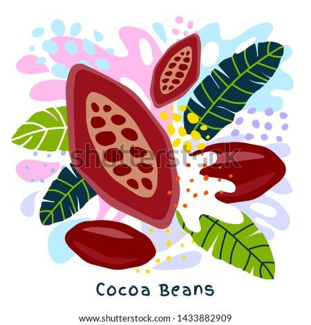 Fresh cocoa beans juice splash organic food condiment spice splatter. Spicy herbs nuts. Abstract colorful art splatter splash background. Vector hand drawn illustration