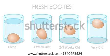 Fresh egg test. Finding daily fresh eggs, weekly old and stale eggs with the flotation and sinking experiment. Freshness experiment in clear glass container, cup. Illustration Vector Foto stock ©