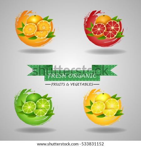 fresh fruits icon  orange  lime