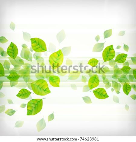 Fresh Green Background - stock vector