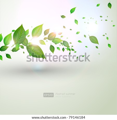 fresh green leaves and sun shine for summer design