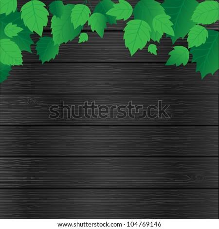 fresh green leaves and sun shine,  frame, vector