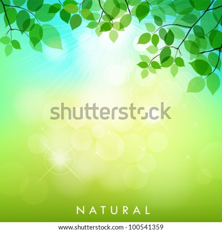 Fresh green leaves on natural background. vector illustration