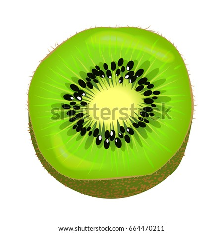 fresh kiwi fruit half isolated