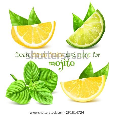 fresh lemon  lime and and mint