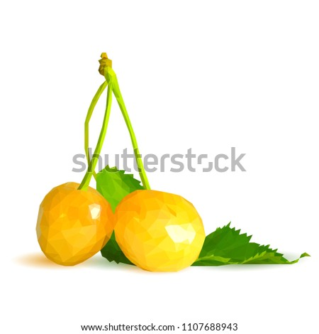 Fresh, nutritious and tasty yellow cherries. Symbols of Fruit. Elements for label design. Vector illustration. Fruit ingredients in triangulation technique. Yellow cherries low poly.