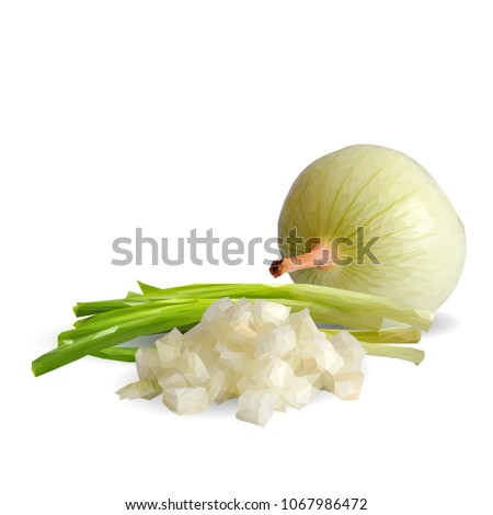 Fresh, nutritious, tasty onion. Green onion. Vector illustration. Vegetables ingredients in triangulation technique. Onion low poly.