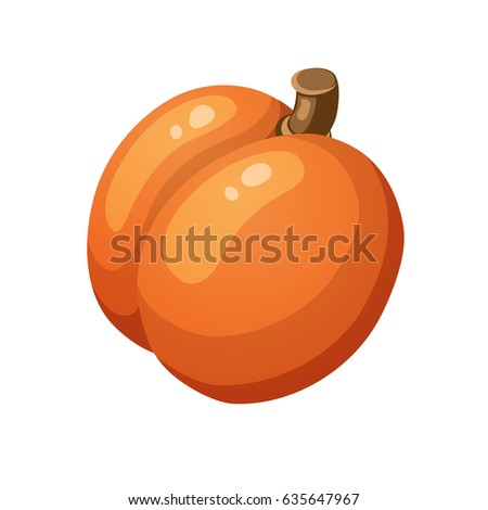 Fresh orange apricot in flat simple style for food illustration