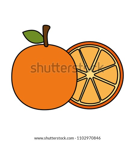 fresh oranges fruits icon