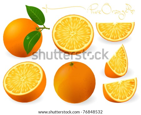 Fresh oranges with leaves and orange slices. Vector. - stock vector