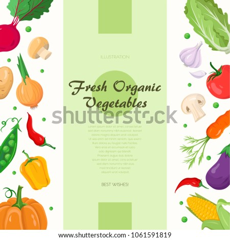 Fresh organic vegetables - modern colorful vector illustration with place for your text. High quality poster with a pumpkin, pepper, corn, garlic, beet, peas, carrot, eggplant, onion, potato, tomato