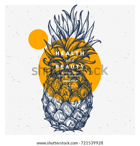 Fresh pineapple design template. Botanical fruit. Engraved pineapple. Vector illustration