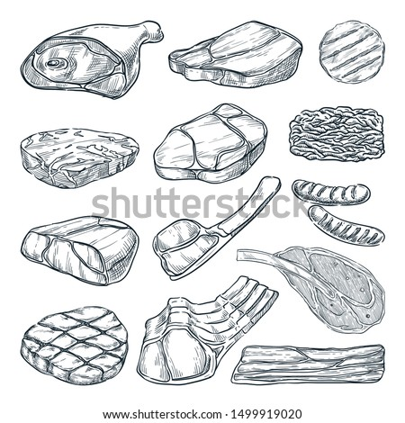 Fresh raw meat collection, sketch vector illustration. Hand drawn food isolated design elements. Pieces of beef steak, ham, pork fillet, lamb chops.
