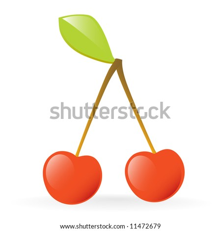 fresh red cherries vector illustration isolated on white background