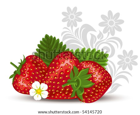 fresh strawberry fruits with