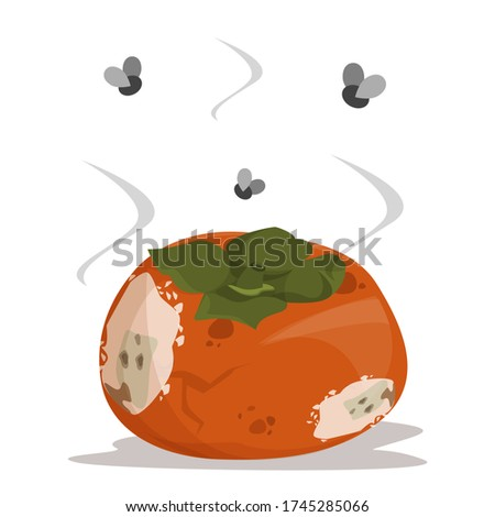 Fresh sweet persimmon becomes rotten and bad vector isolated. Poisonous fruit, food waste, damaged meal. Foto stock ©