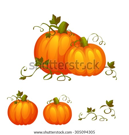 fresh two pumpkin with sweet