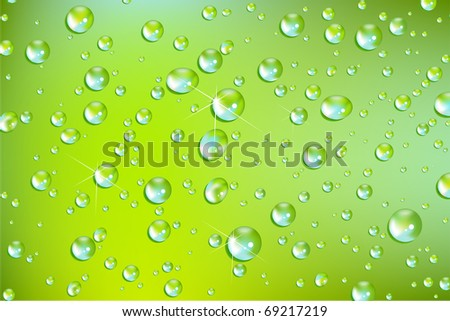 fresh vector water drops