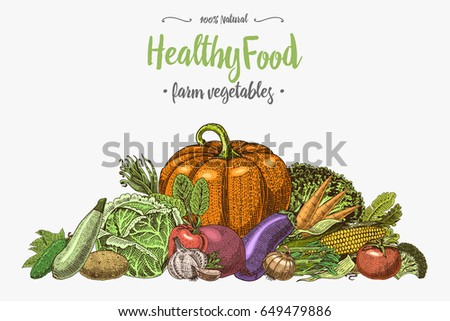 Fresh vegetables background with space for text, hand drawn or engraved, vintage, retro looking plants, vegetarian and healthy food